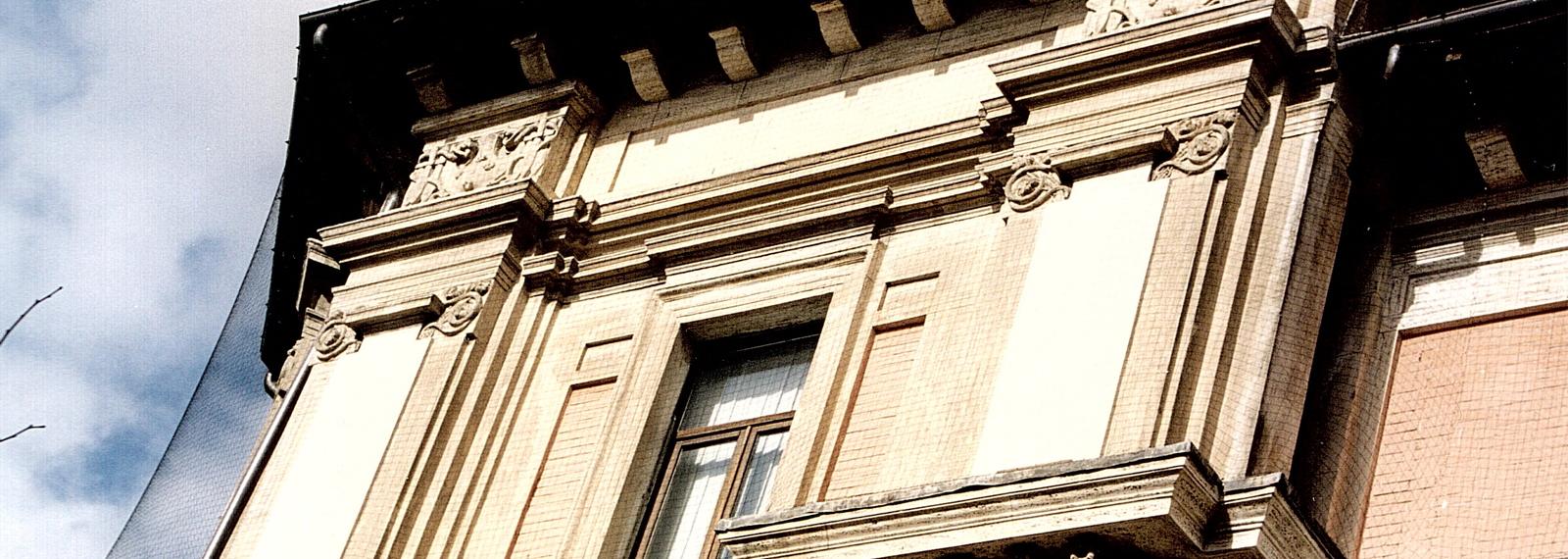 problema piccioni per edifici